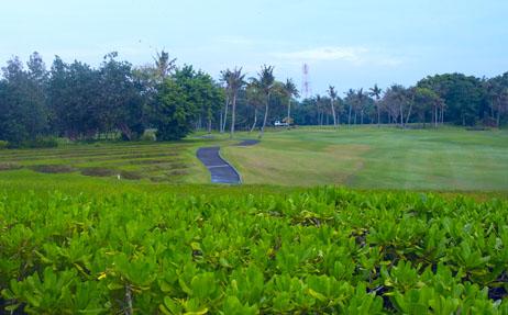 Borneo Felder