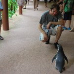 Vogelpark Singapur