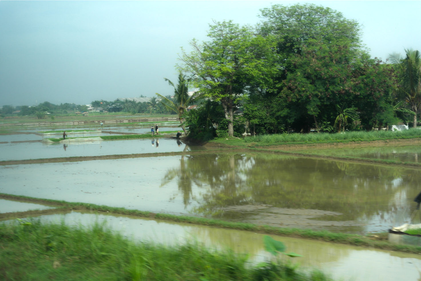 Zugfahrt von Jakarta nach Yogyakarta