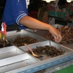 Insekten Essen in Thailand