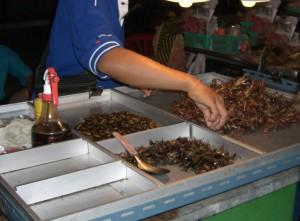Insekten in Bangkok