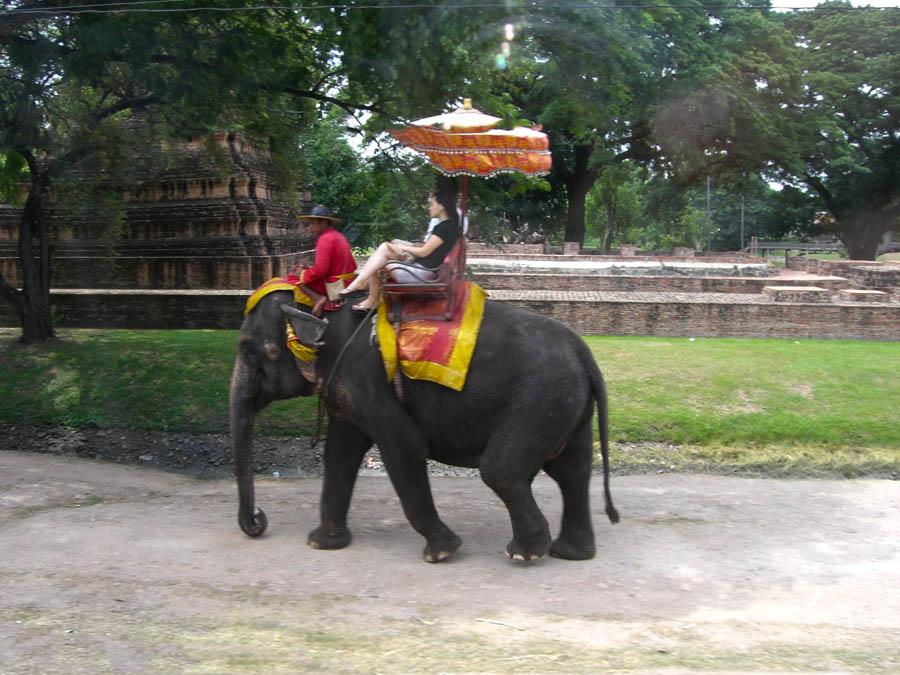 Thailand – Im Land der Elefanten